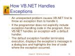 how vb net handles exceptions