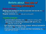 beliefs about the role of learning strategies1
