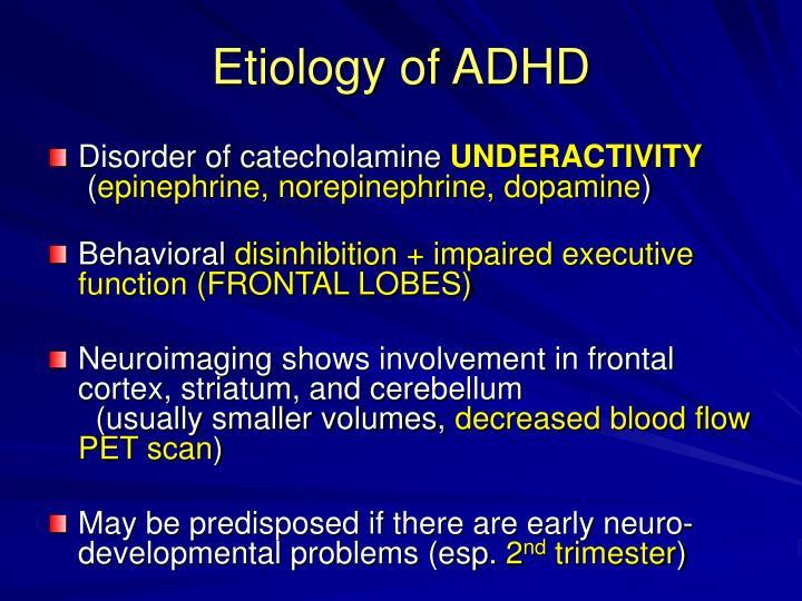 Etiology of ADHD