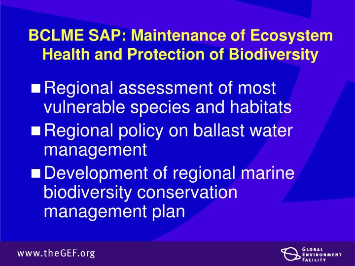 BCLME SAP: Maintenance of Ecosystem Health and Protection of Biodiversity
