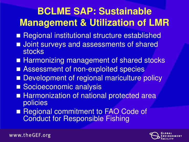 BCLME SAP: Sustainable Management & Utilization of LMR