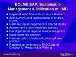 bclme sap sustainable management utilization of lmr
