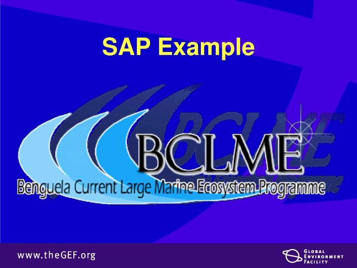 SAP Example