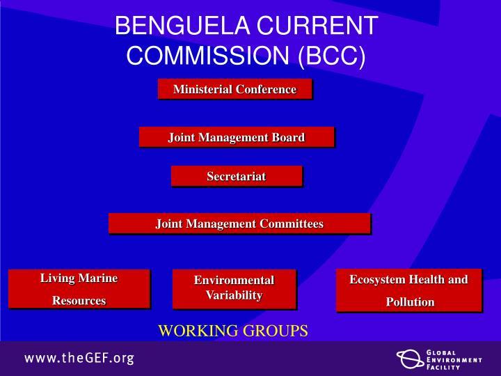 BENGUELA CURRENT COMMISSION (BCC)