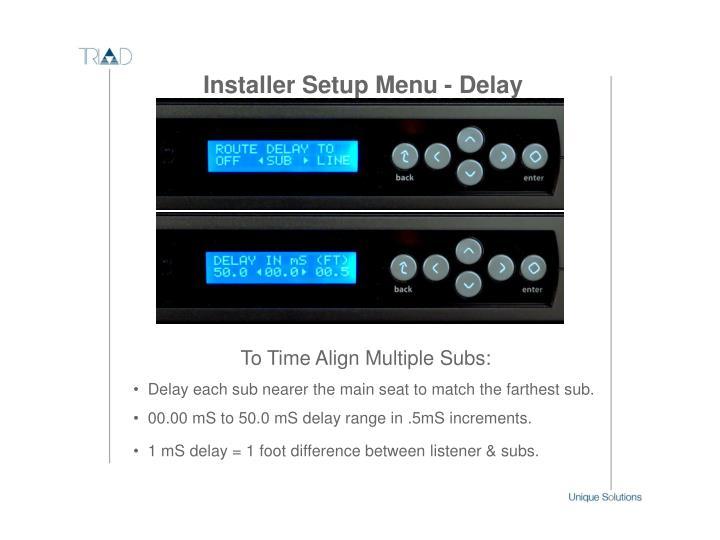 Installer Setup Menu - Delay