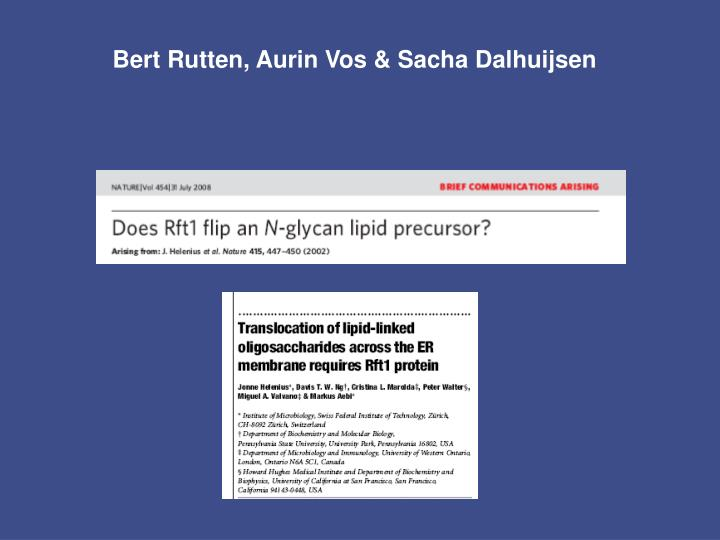 Bert Rutten, Aurin Vos & Sacha Dalhuijsen