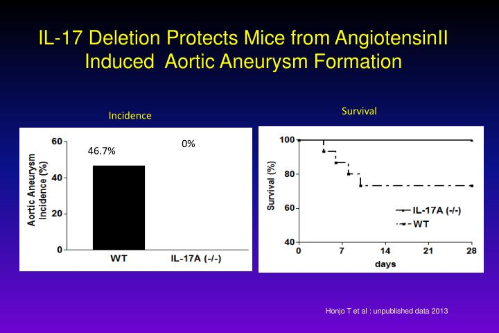 IL-17 Deletion Protects Mice from AngiotensinII Induced  Aortic Aneurysm Formation