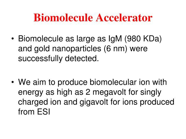 Biomolecule Accelerator