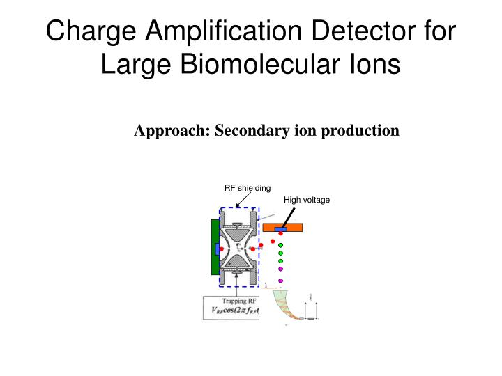 Charge Amplification Detector for Large Biomolecular Ions