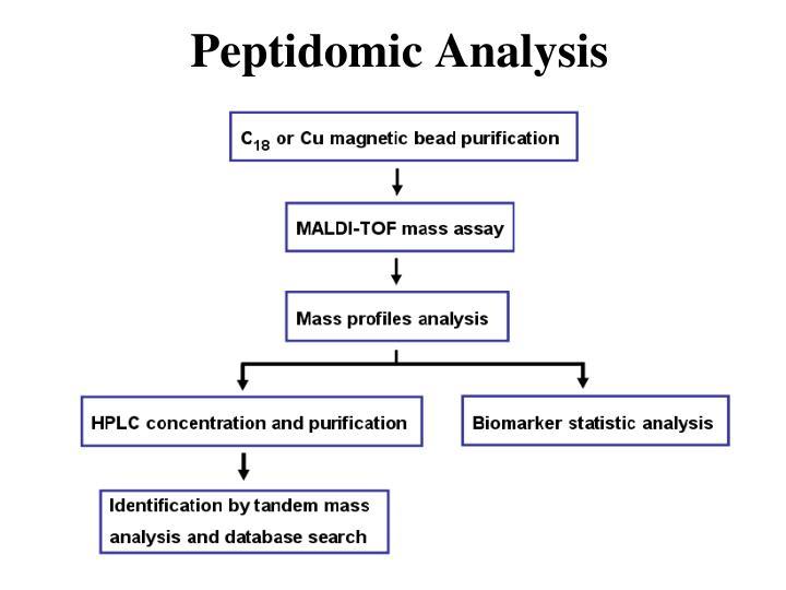 Peptidomic Analysis
