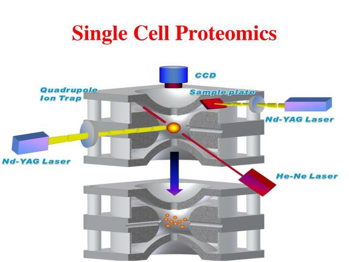 Single Cell Proteomics