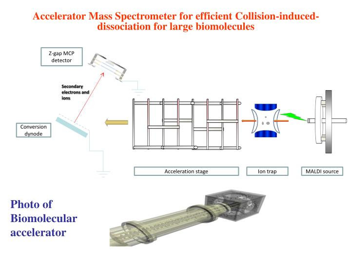 Accelerator Mass Spectrometer for efficient Collision-induced-dissociation for large biomolecules