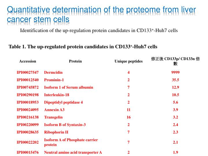 Quantitative determination of the proteome from liver cancer stem cells