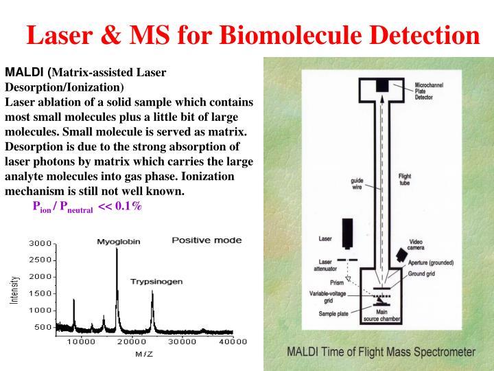 Laser & MS for Biomolecule Detection