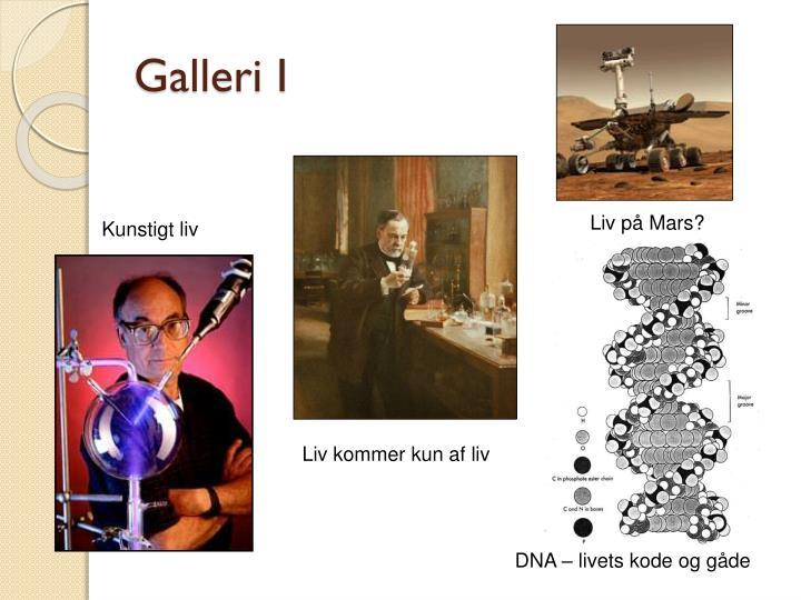 Galleri I