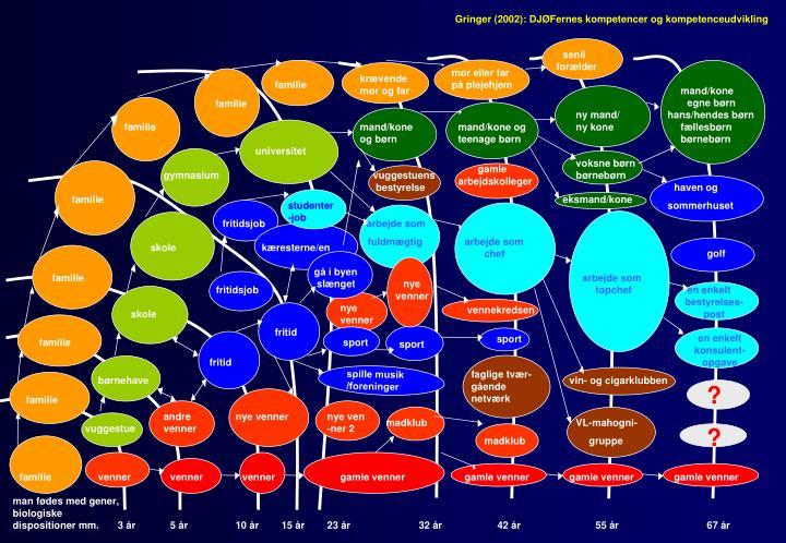 Gringer (2002): DJØFernes kompetencer og kompetenceudvikling