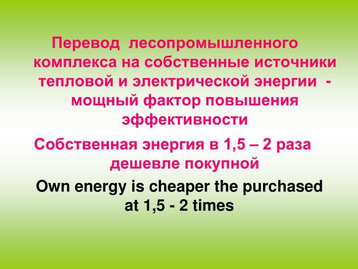Перевод  лесопромышленного комплекса на собственные источники тепловой и электрической энергии  -  мощный фактор повышения эффективности