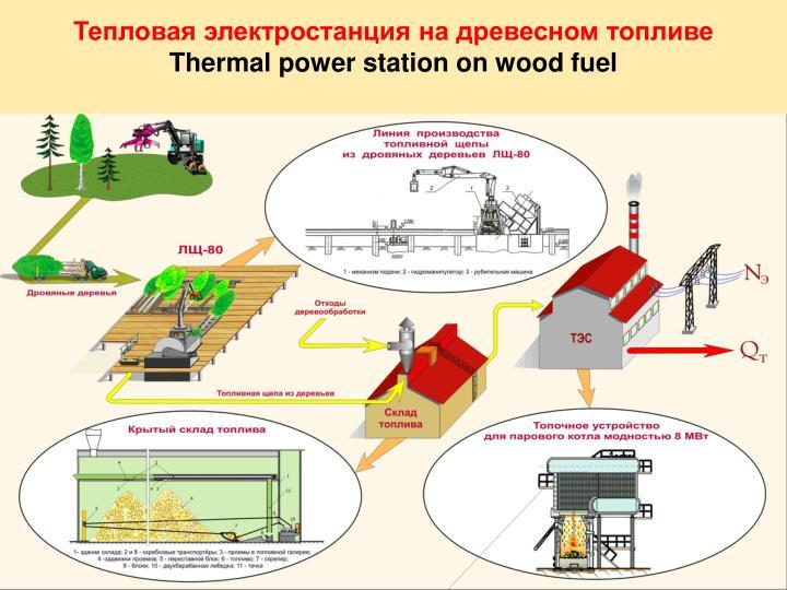Тепловая электростанция на древесном топливе