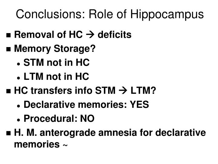 Conclusions: Role of Hippocampus