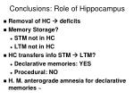 conclusions role of hippocampus