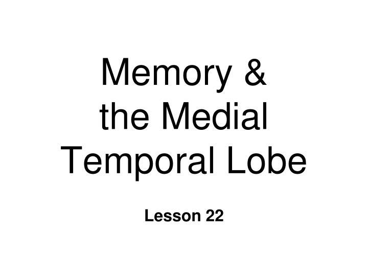 memory the medial temporal lobe