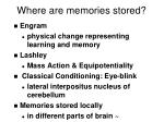 where are memories stored