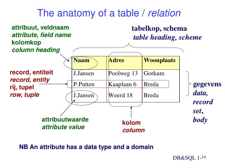 The anatomy of a table /