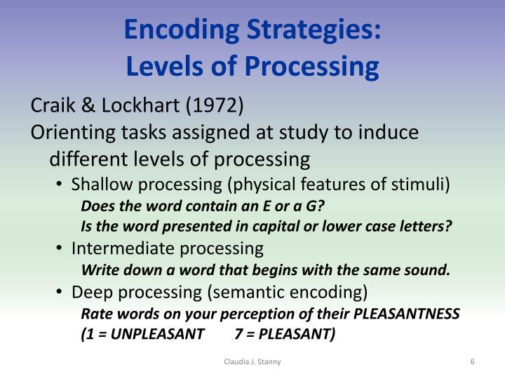 Encoding Strategies: