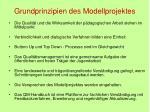 grundprinzipien des modellprojektes