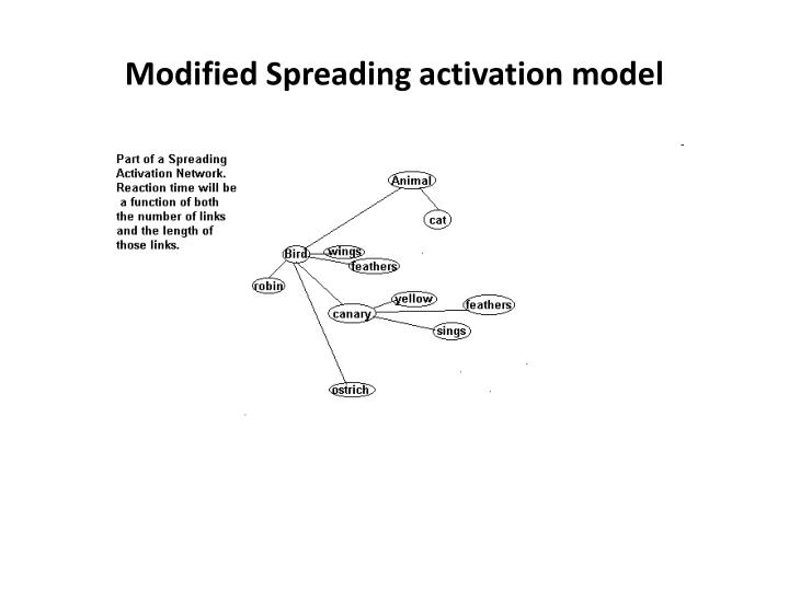 Modified Spreading activation model
