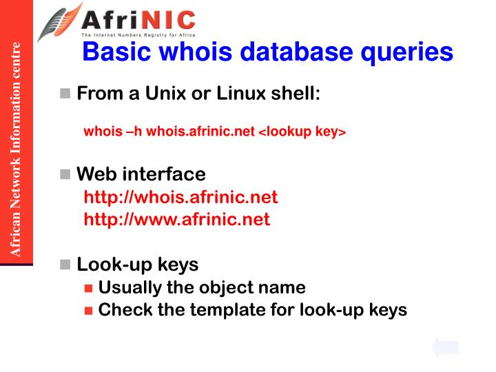 Basic whois database queries