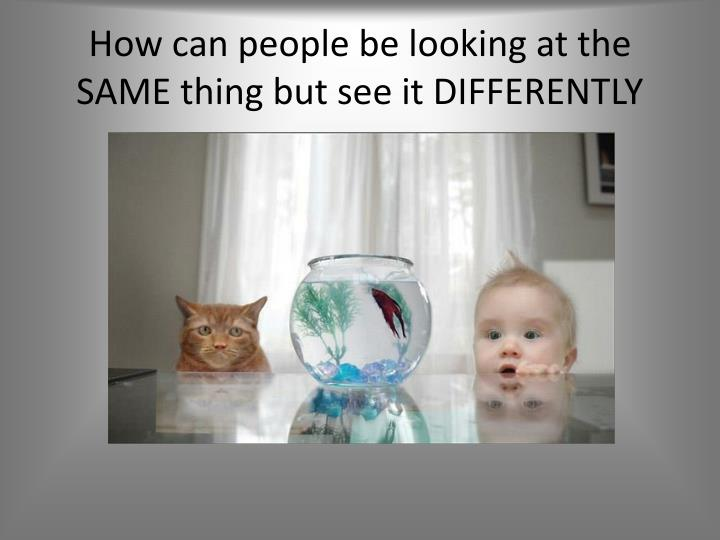 How can people be looking at the SAME thing but see it DIFFERENTLY
