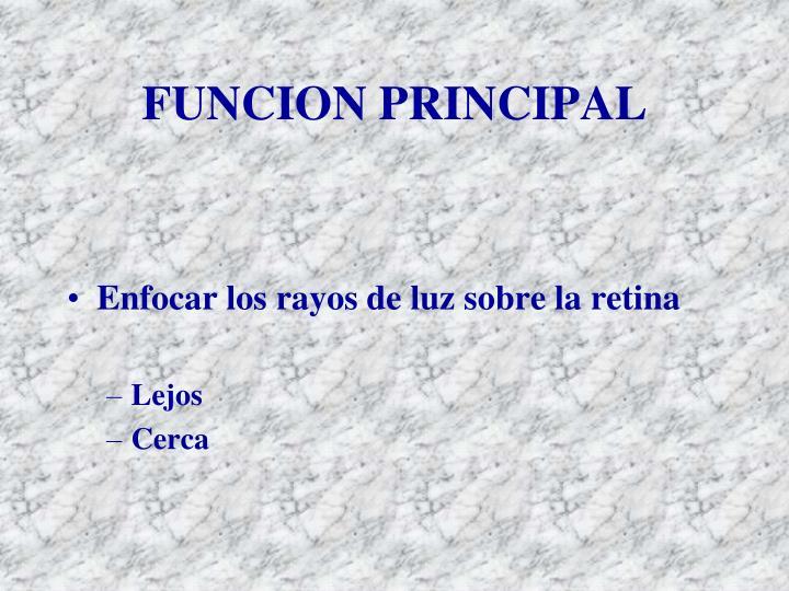 FUNCION PRINCIPAL