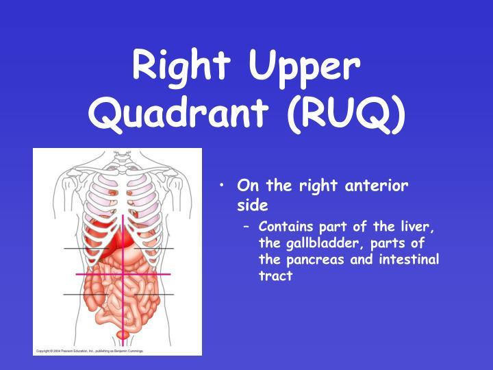 Right Upper Quadrant (RUQ)