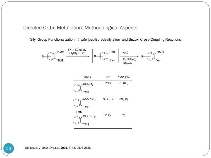 Directed Ortho Metallation: Methodological Aspects