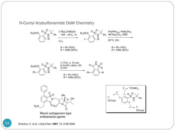 N-Cumyl Arylsulfonamide DoM Chemistry
