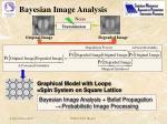 bayesian image analysis