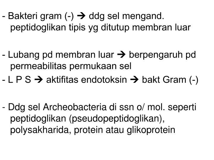 - Bakteri gram (-)