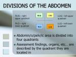 divisions of the abdomen