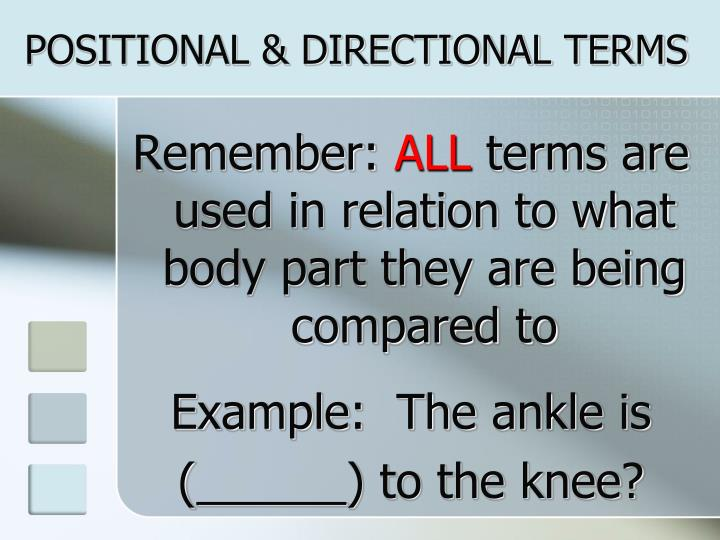 POSITIONAL & DIRECTIONAL TERMS
