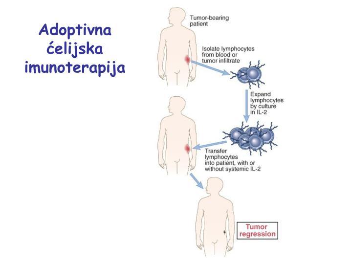 Adoptivna ćelijska imunoterapija