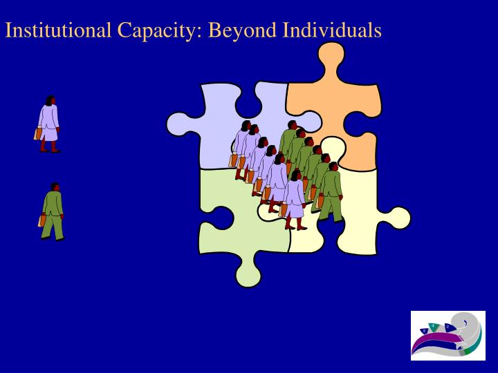 Institutional Capacity: Beyond Individuals