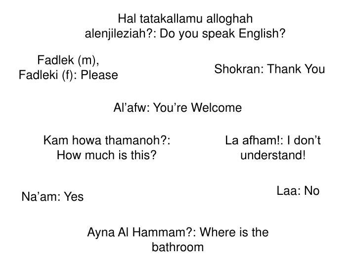 Hal tatakallamu alloghah alenjileziah?: Do you speak English?
