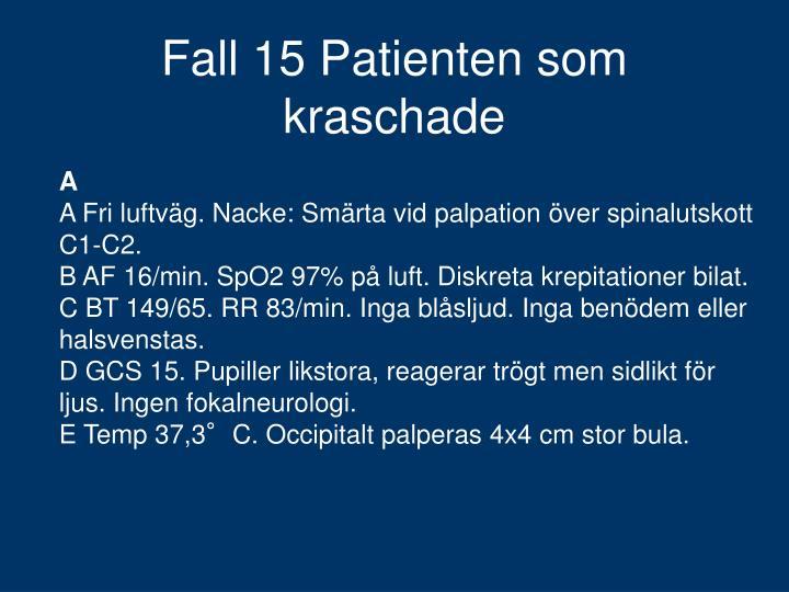 Fall 15 Patienten som kraschade