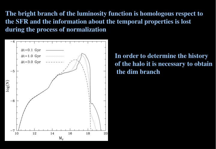 The bright branch of the luminosity function is homologous respect to