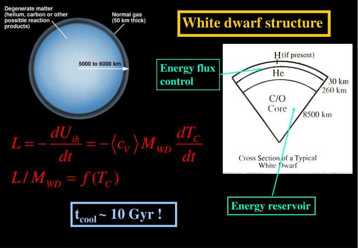 White dwarf structure