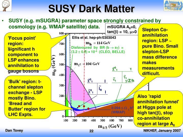 SUSY Dark Matter