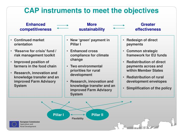 CAP instruments to meet the objectives