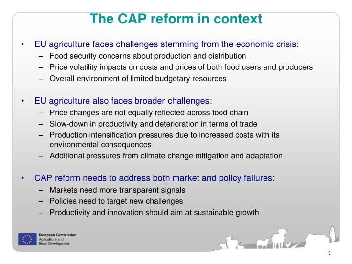 The CAP reform in context