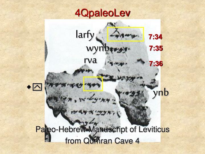 4QpaleoLev